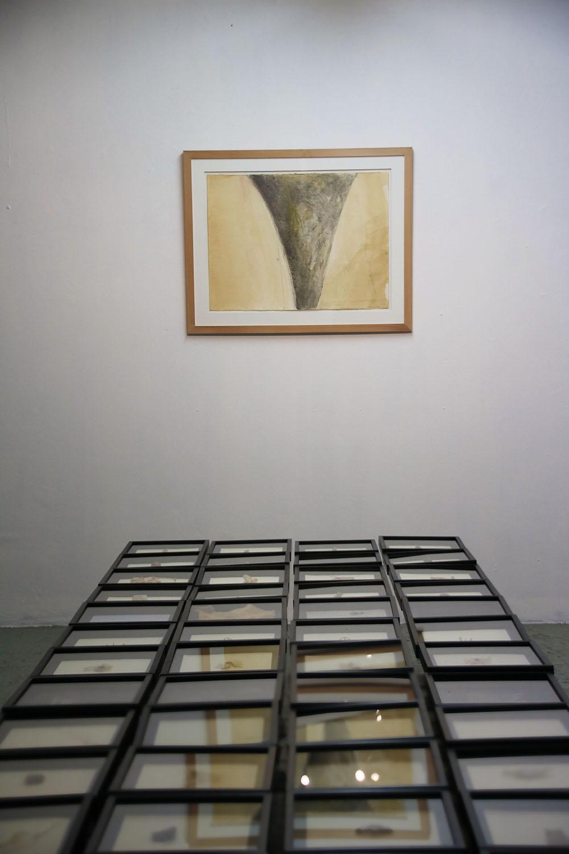 Sorrel Hofmann: Installation 1