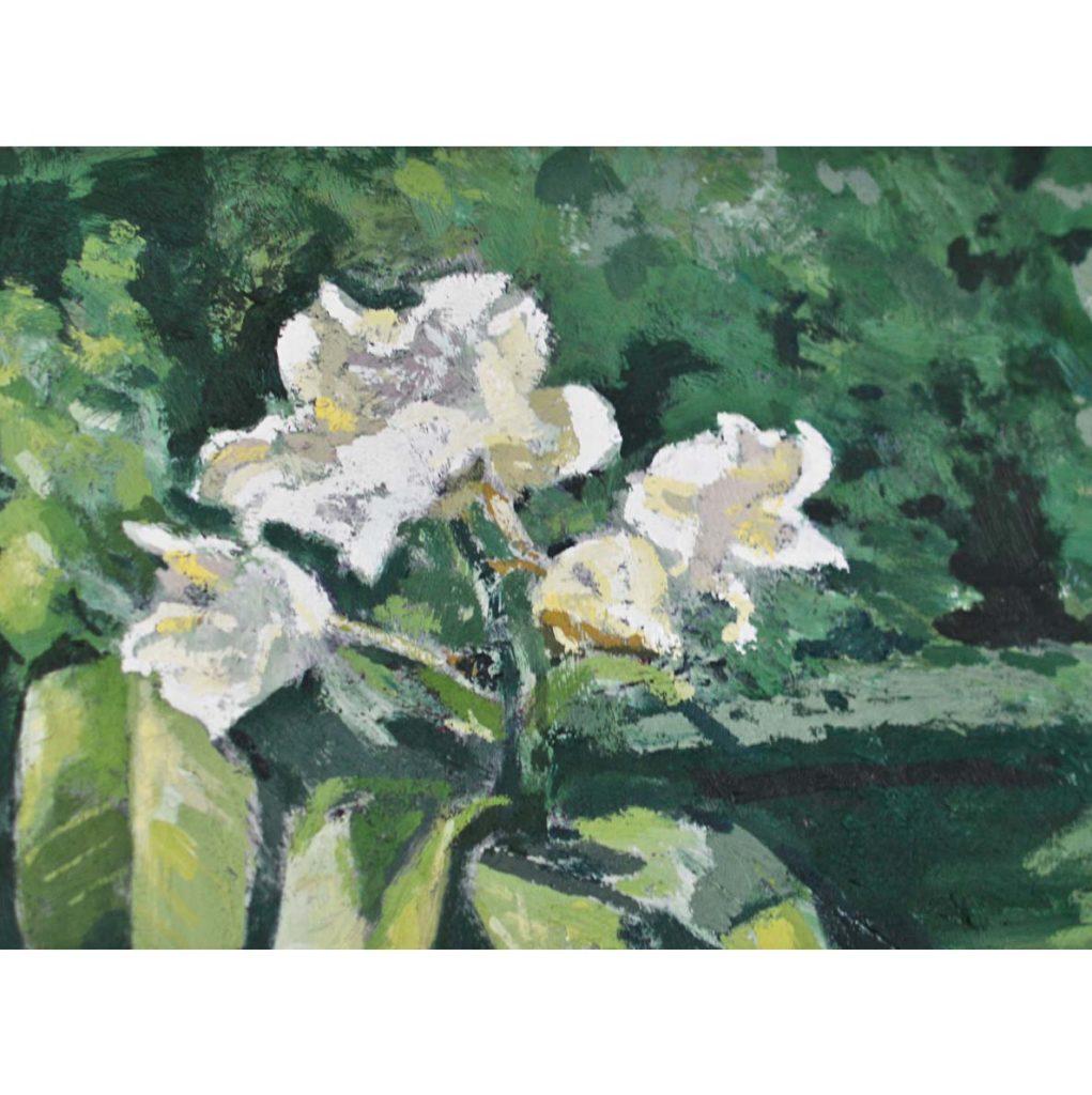 Ben Coutouvidis Untitled (some white petals) 2018 oil on canvas 30 x 40 cm