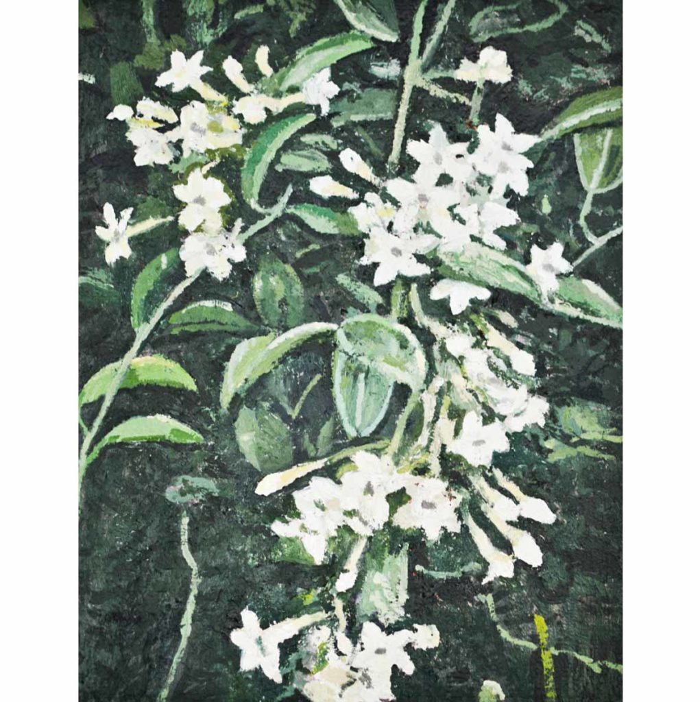 Ben Coutouvidis untitled (jasmine) 2018 oil on canvas 30 x 38 cm