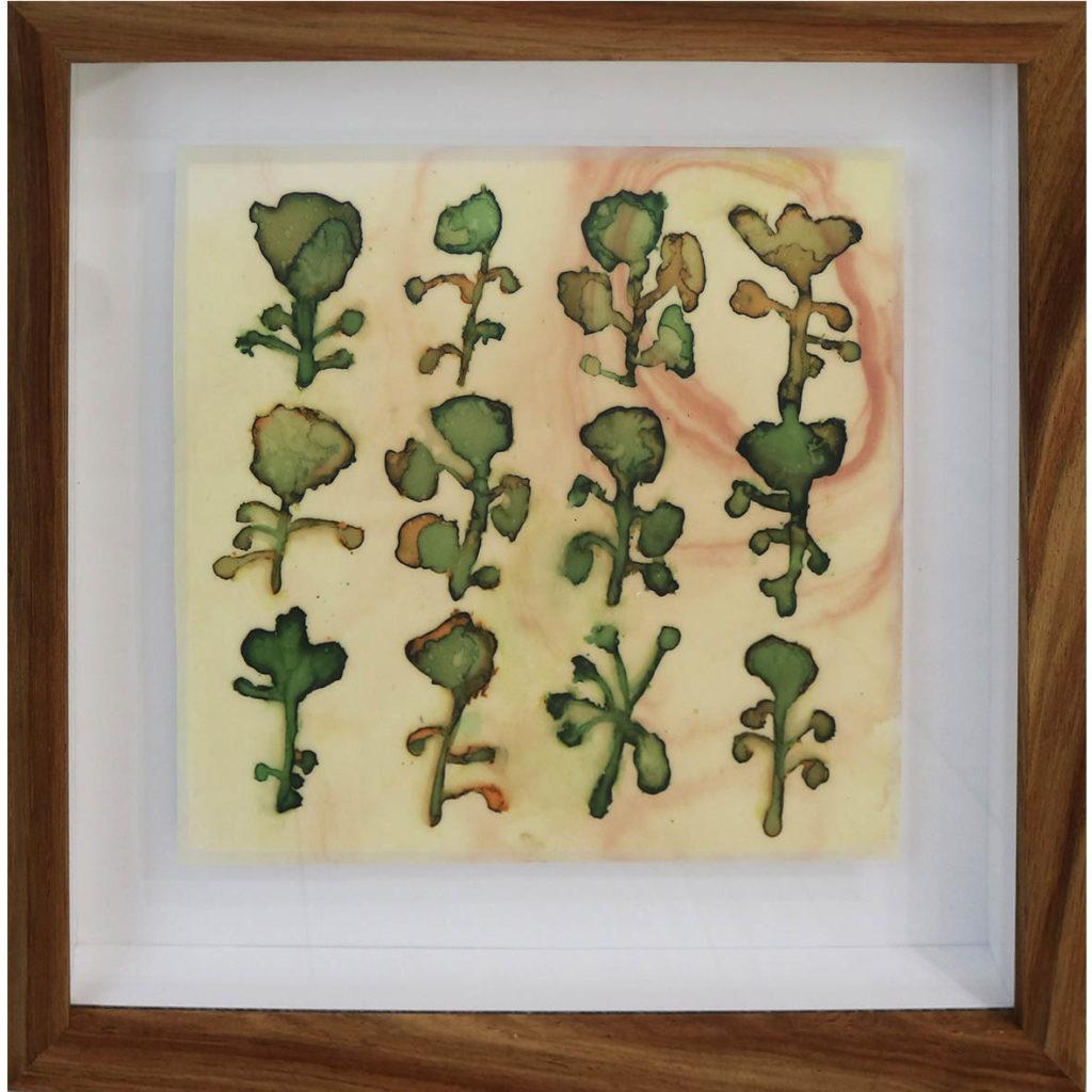 Sue Greeff, Tend My Garden, 2018, Ink on latex, 29 x 29 cm