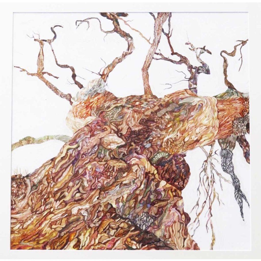 Oak tree 2018 Watercolour on paper 81 x 81 cm