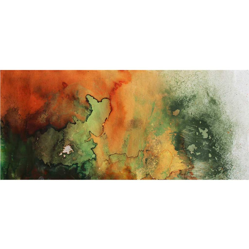 Sue Greeff outer bloom 2019 Ink and Pigment on paper 50 x 20.5 cm